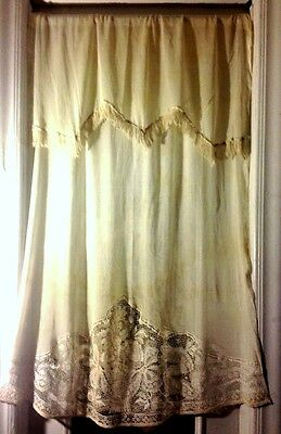 Incredible Antique Curtain Panel Chemical Lace Edwardian Pattern Trim Edging