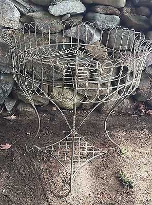 Victorian Iron/Wire Antique Garden Stand/ Planter-Elegant!