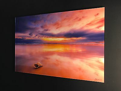 "Limited Edition Fine Art Photo, Mark Zissis "" Shell Sunrise"" 47"" Peter Lik Style"