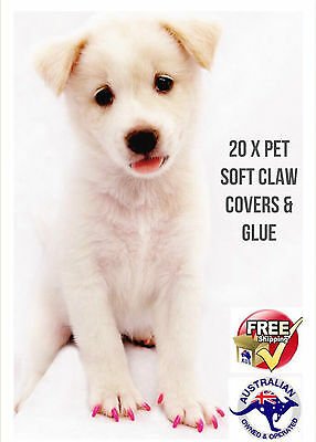 20pcs & 1 Glue Soft Dog Nail Caps Pet Claw Covers Paw Protective Multi-color