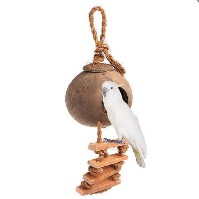 Pet Birds Parrot Parakeet Swing Natural Coconut Shell Nest Ladder Toy Cage Toys