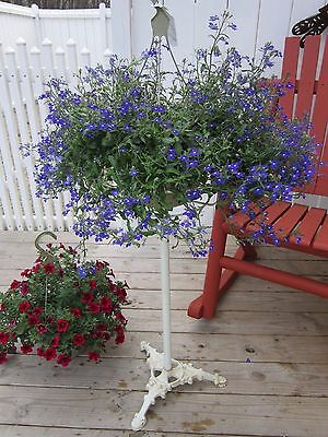 "Old Vintage Ornate Iron Base Flower Basket Plant Display Stand 33"" Tall"