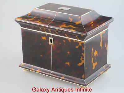 Georgian Antique 19th Century Faux Tortoiseshell Tea Caddy Circa 1820
