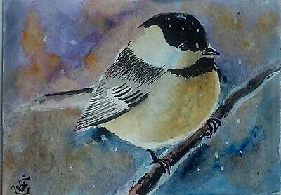 Hand Painted Original Watercolor ACEO BLACK CAPPED CHICKADEE Bird Signed by JV