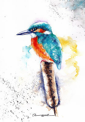 Original Watercolour Kingfisher Painting by Artist Be Coventry Wildife  Art