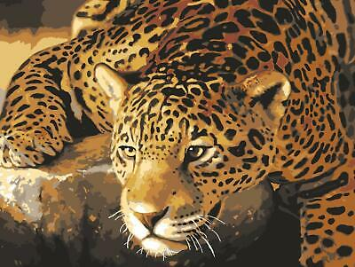 Grafitec Printed Tapestry/Needlepoint Canvas – Jaguar Prowl
