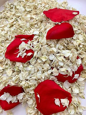 Biodegradable Wedding Confetti Red & Ivory. Dried Flower Delphinium Rose Petals