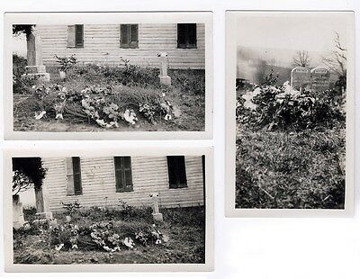 1920s Original Photographs Lot of 3 - Graves Fresh Flowers - West Virginia