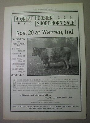 1902 ad: WARREN INDIANA shorthorn cattle sale; Throop, Manilla, Souers, Witter