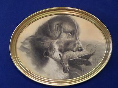victorian 19th century original drawing of a sporting gun dog with game bird.