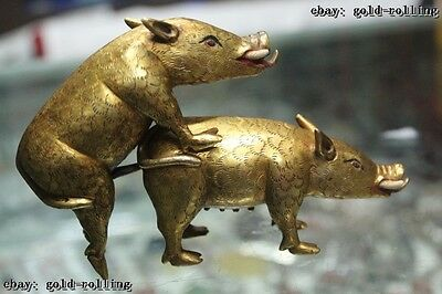 "4""China Tibet Buddhism temple Old Bronze 24K Gold Lifelike Two wild boar Statue"