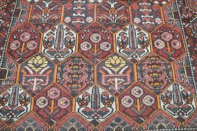 6'4 x 9'8 1930s Authentic Antique Persian Bakhtiari Chahal Hand Knotted Wool Rug