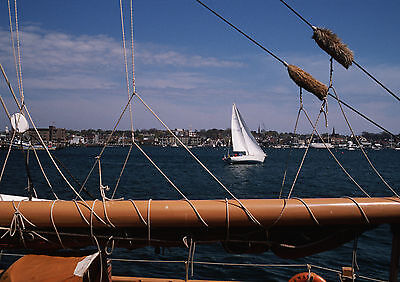 Art Print POSTER / Canvas Sailboat Seen Through Mast and Sail