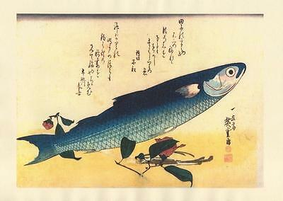 Japanese Reproduction Woodblock-Fishes #81 by Ando Hiroshige on Parchment Paper
