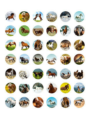 photograph regarding Printable Bottlecap Images titled HORSE THEMED PRINTABLE Bottle Cap Illustrations or photos ~ 42 Choice Ideas!