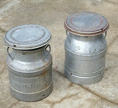 Lot of 2 Vintage Buhl 12 qt Cream Cans with Lids - Cool Kid Seats