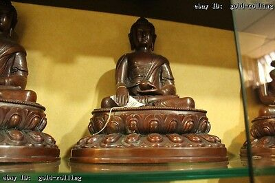 Tibet Buddhism Temple Fane Old Purple Bronze carved sakyamuni Buddha Statue