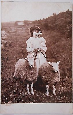 Vintage RP Postcard Child Two Sheep Noblehill Primary School Dumfries Scotland