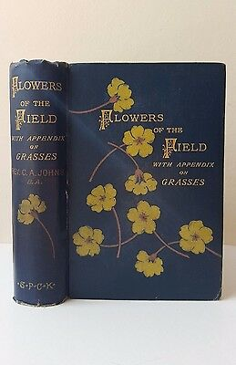 Antique book Flowers of the Field by C.A. John 1894