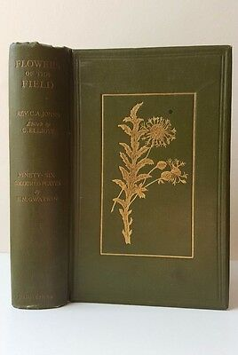 Antique book Flowers of the Field, C. A. John, ed. Clarence Elliott
