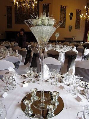 Giant Champagne Glass/Giant Wine Glass/Giant Martini Glass FOR EVENT DECOR HIRE!