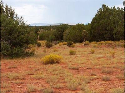 Your 40 Acre In Arizona With Trees, Have Your Farm Pets/animals. Cash Sale Only
