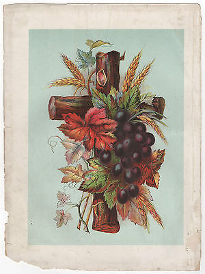 Antique Print Wooden Crucifix with Fruit, Corn & Leaves. From 1887 Family Bible