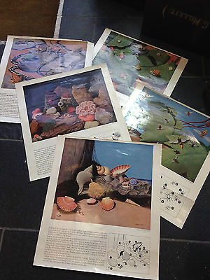 Vintage Collection Of 5 1950's/ 60's Educational School Posters Nature Shell