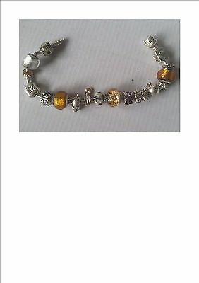 Pandora Bracelet 20cm Sterling Silver with 19 Charms