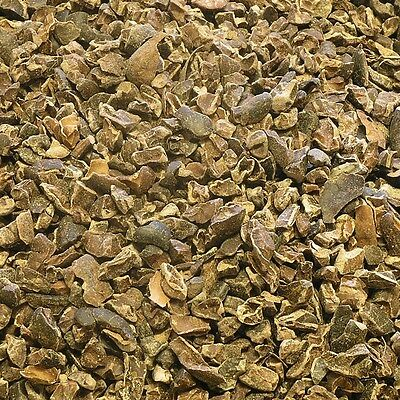CACAO SEEDS Cocoa bean DRIED Herb, Loose Health Herbs 75g