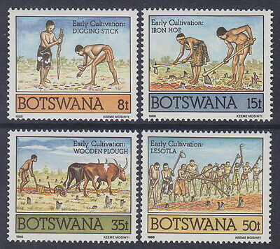 BOTSWANA - 1988 Early Cultivation (4v) - UM / MNH