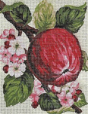 FRENCH COUNTRY FRUIT- APPLE- NEEDLEPOINT TAPESTRY canvas to stitch- 20 X 25 CM