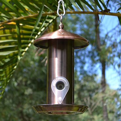 Hanging Copper Tube Bird Feeder for wild garden birds of Australia
