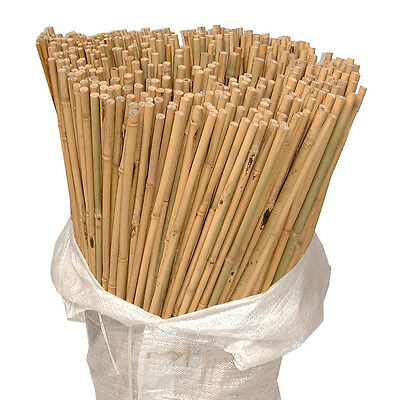 Heavy Duty Strong Bamboo Out Door Garden Canes Plant Support Poles Natural Thick