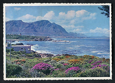C1960s View of Hermanus Cape, South Africa