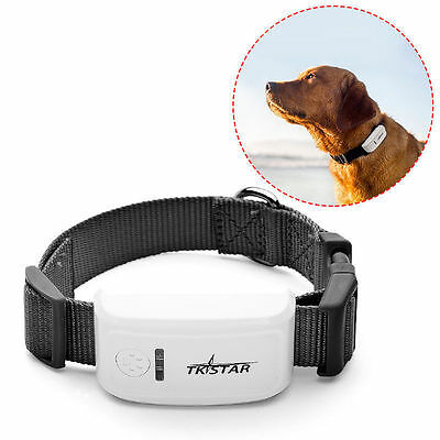 GPS GPRS GSM SMS Para Realtime Tracker Device Perro Gatos Animal Collar PS013