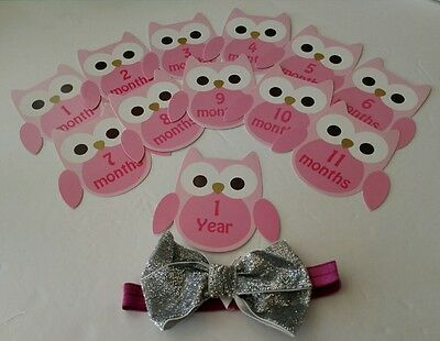 Baby's first year Pink Owl headban & 12 Monthly Stickers for girl.By Lovespun