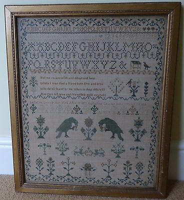 Georgian Needlework Sampler katherine Cowley Aged 18 1821 With Parrots