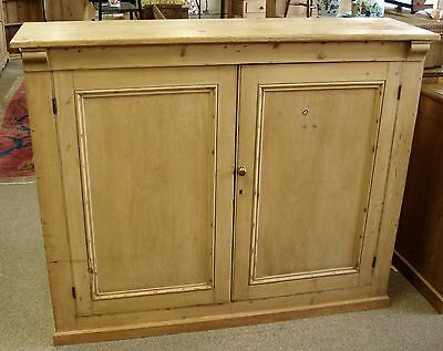 Shallow Two Door 19th Century Antique Pine Cupboard