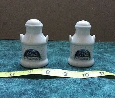 Souvenir Salt & Pepper Shakers - Mount Rushmore - Ceramic - Free Ship!
