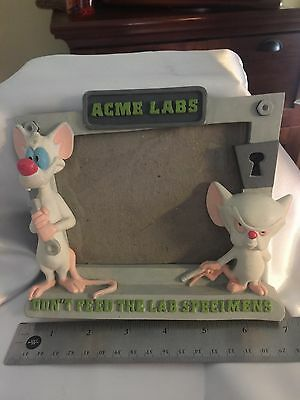 1996 Pinky and the Brain Frame