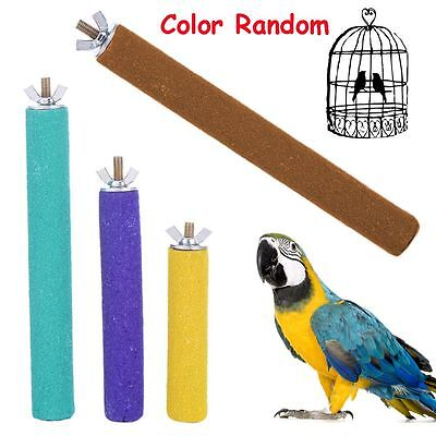 Color Random Paw Parrot Perches Stand Bird Cage Paw Grinding Station Platform