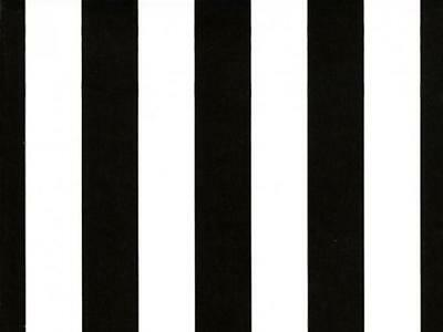 Wrapping Paper for Gifts TRENDY Black & White Stripes Fresh Style Roll 16 Ft