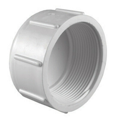"""Charlotte Pipe Cap Sch 40 Pvc 1/2 """" Fpt White Pack of 25"""