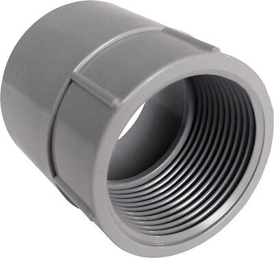 "Cantex Sch 40 Pvc Female Adapter 4 "" Bulk"