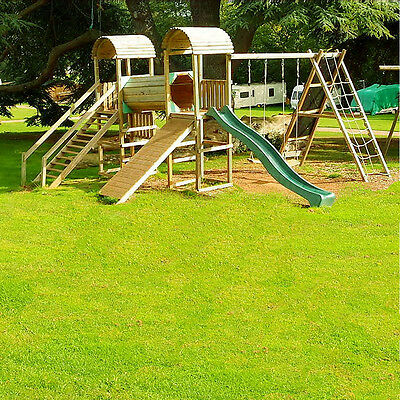 Fast Growing Tough Lawn Grass Seed Ideal For Childrens Play Areas Repair