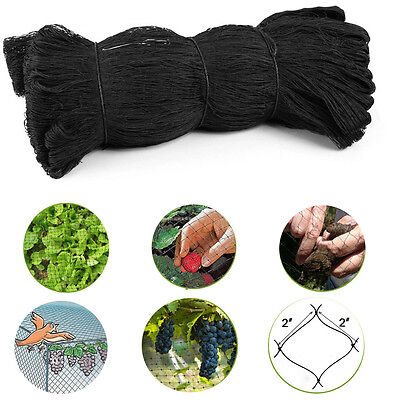 50' X 50' Net Netting For Bird Rabbit and Beasts Poultry Aviary Game Pens AU