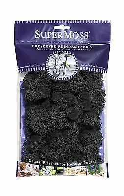 SuperMoss (25123) Reindeer Moss Preserved Black 2oz 80.75 in3 B... Free Shipping