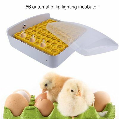 Digital Automatic Temperature Control 56 Eggs Incubator with Egg Candler 110V US