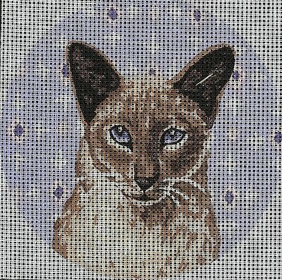'LUCY' The Siamese kitten tapestry  20X20CM CANVAS ONLY OR KIT - YOUR CHOICE!